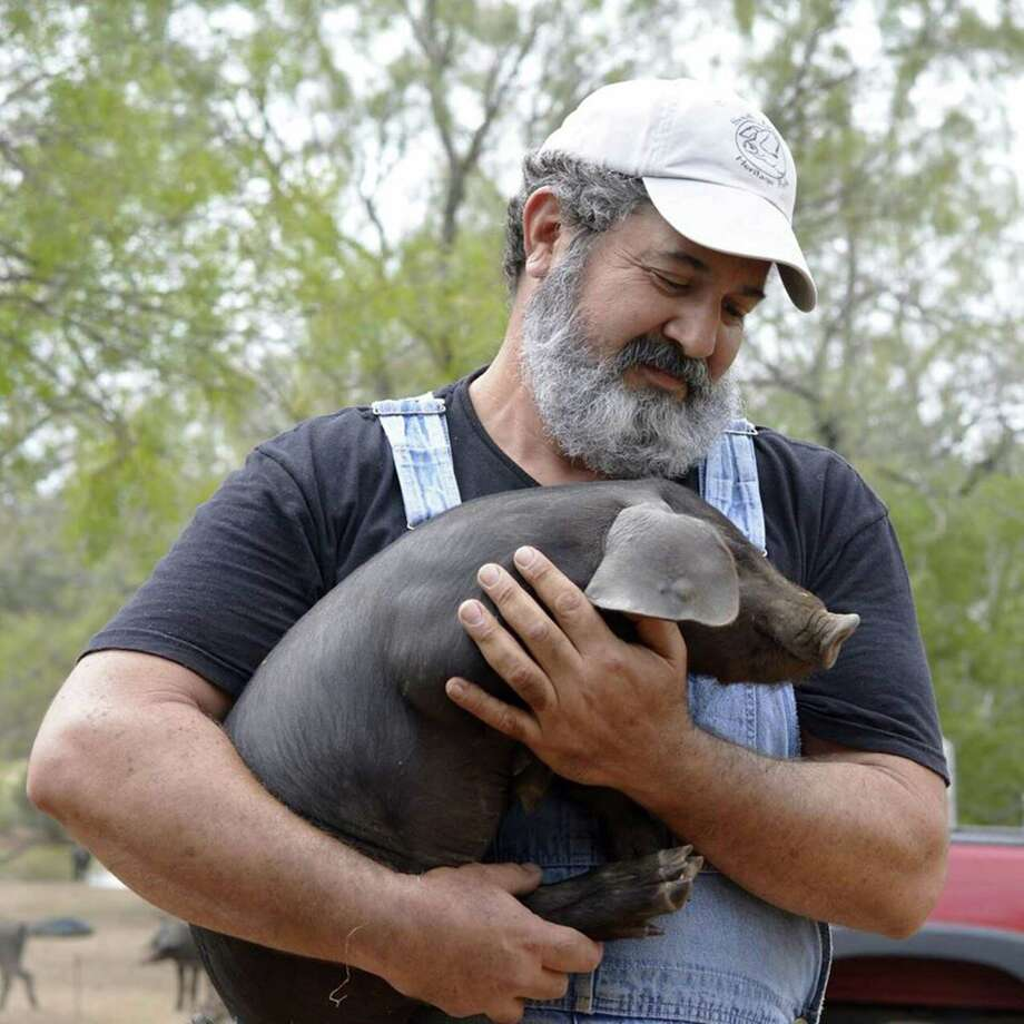 Mark Escobedo holds one of his prized Heritage breed piglets on his South Texas Heritage Pork farm just outside Floresville. Photo: Sophie Covo /Edible San Antonio