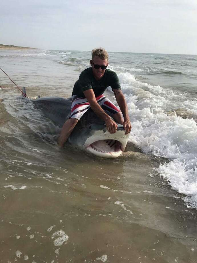 Texas Man Catches 12 Foot Tiger Shark At Padre Island Houston Chronicle