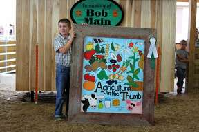 In livestock action Friday night at the Huron Community Fair, Addy Battel won the small livestock showmanship sweepstakes. On Saturday, the Small Livestock Association sale was conducted.