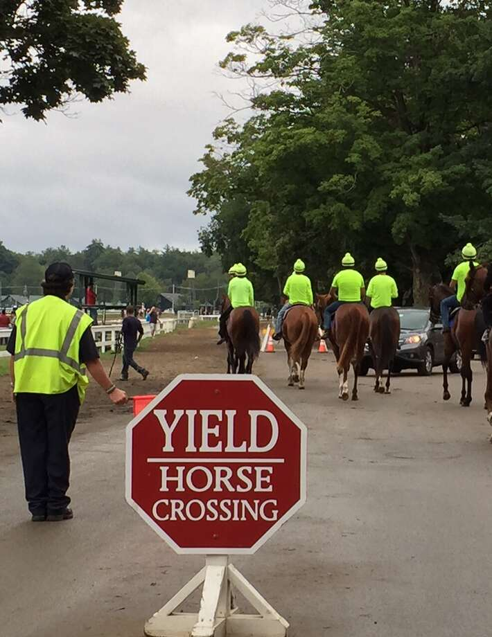 If you have a horse trained by Linda Rice, it's not hard to find him or her during the morning training hours. All of Linda's horses have exercise riders on their backs wearing neon lime green tops. So, it's next to impossible not to be able to pick them out when they're running. Here, a group of her horses heads to the main track for training Saturday morning. The security guard at the left secretly wants to be part of the team. At least she's dressed for it. (Tim Wilkin / Times Union)