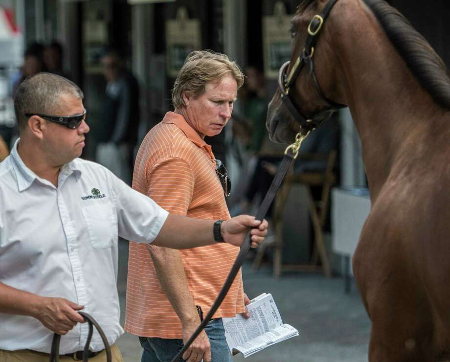 Trainer Dallas Stewart, center, looks over a sales yearling on the Fasig-Tipton sales grounds Sunday Aug. 6, 2017 in Saratoga Springs, N.Y. The Saratoga Sale runs Monday August 7-8 and The New York Bred Sale runs August 12-13.  (Skip Dickstein/Times Union) Photo: SKIP DICKSTEIN