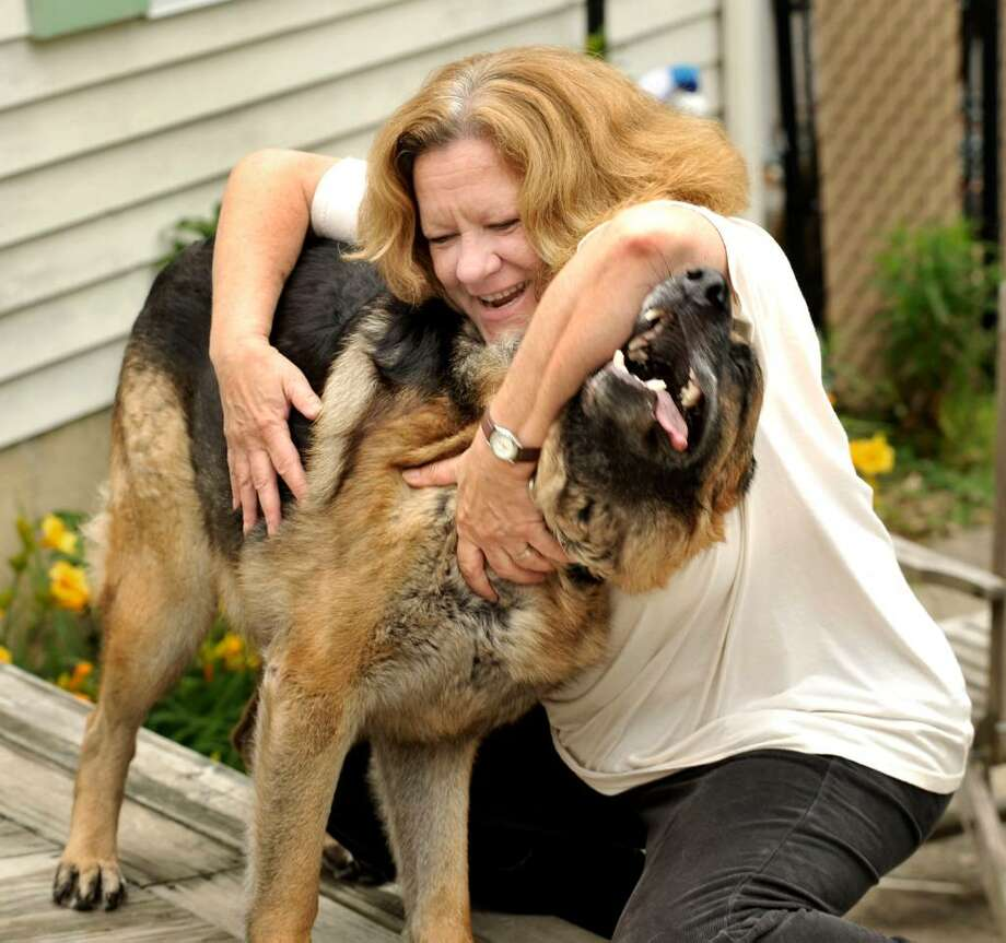 Pat McCarthy, 53, pet sits a German Shepherd in Brookfield on Thursday, June 10, 2010. Photo: Michael Duffy / The News-Times