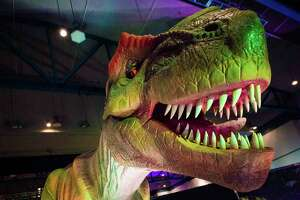 """""""Discover the Dinosaurs Unleashed"""" is coming to Freeman Coliseum."""