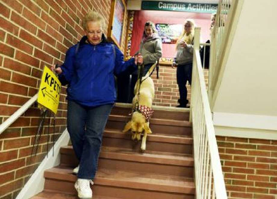 Keystone Pet-Enhanced Therapy Services handler Harriet Hombach leads her Labrador retriever Corky to a lower-level room in York College's student union where students could pet therapy dogs on Wednesday in York, Penn.