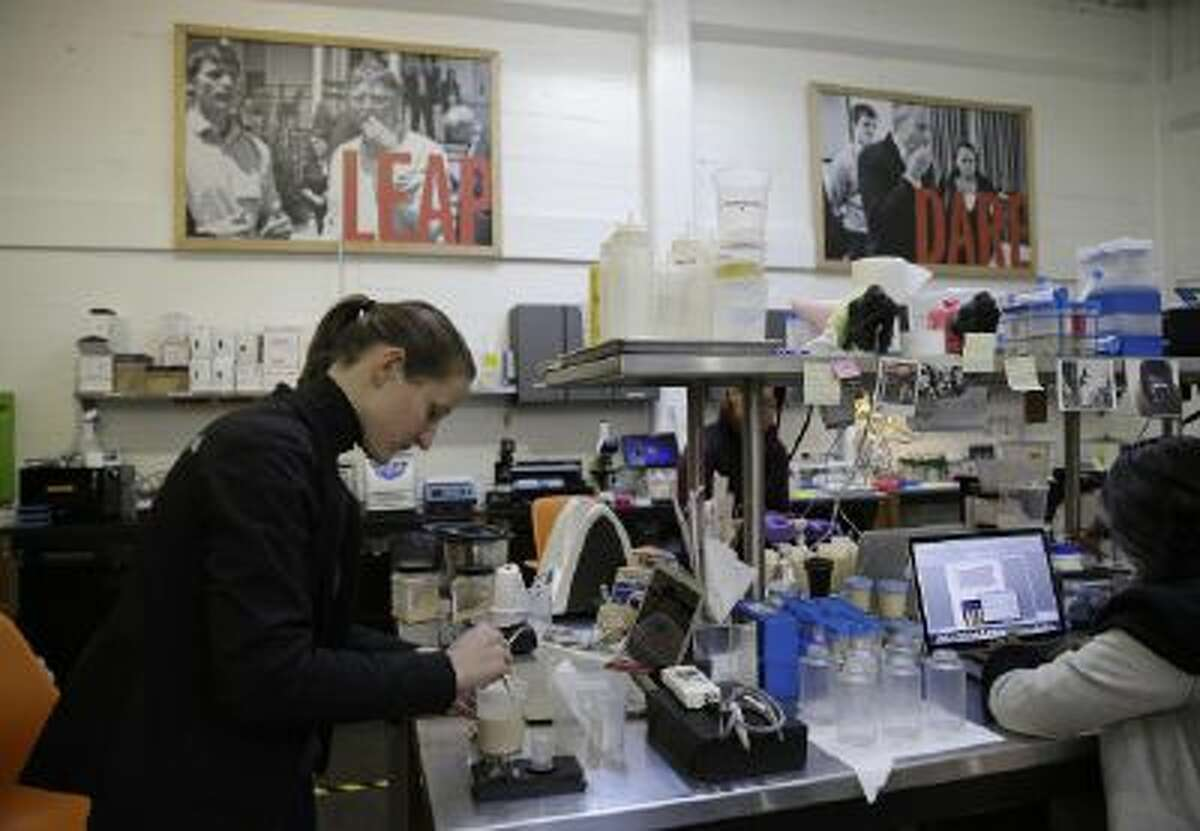 In this photo taken Tuesday, Dec. 3, 2013, with pictures of backers Bill Gates, left, and Tony Blair, right, in the background, research associate Camilla Hall measures a protein isolate at Hampton Creek Foods in San Francisco.