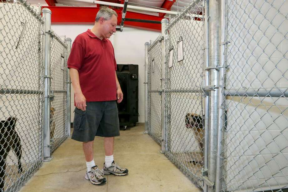Gilbert Ramirez from Converse looks for a dog to adopt in the new building at the Kirby-Bexar Animal Facility, 5503 Duffek Dr. in Kirby, on Friday, Aug. 4, 2017. Photo: Marvin Pfeiffer / San Antonio Express-News / Express-News 2017