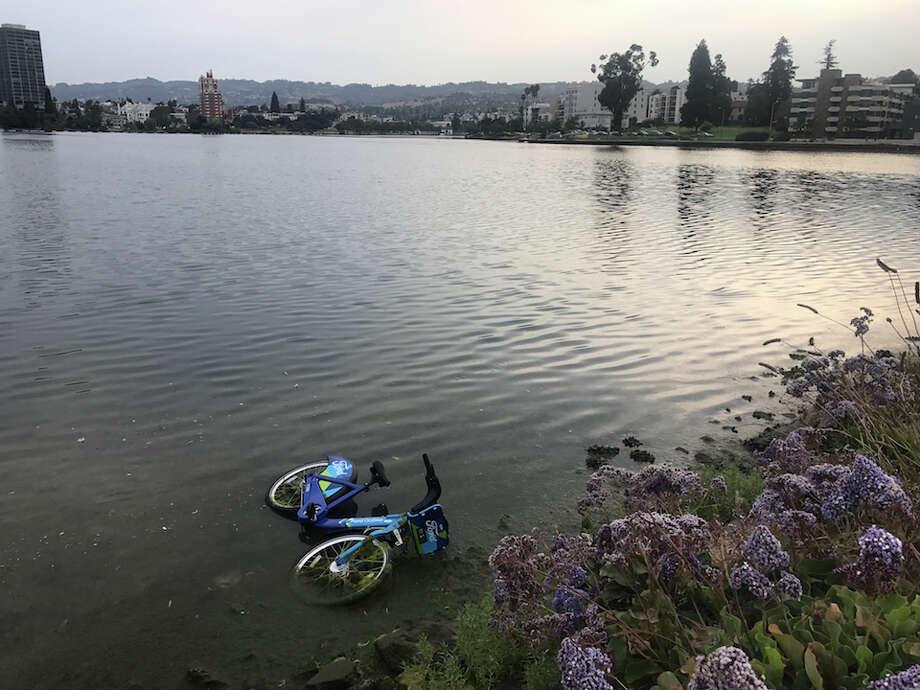A Ford GoBike was dumped in Lake Merritt last week. Photo: Henry Pickavet/Hoodline Tipline