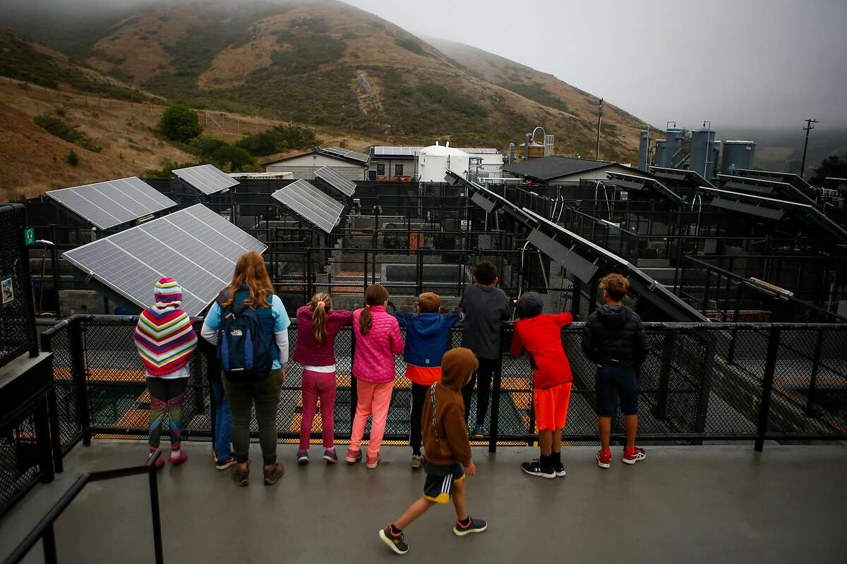 Children from the Marine Explores Summer Camp look out at pens of California sea lions suffering from domoic acid poisoning at the Marine Mammal Center in Sausalito on Wednesday, August 9, 2017.
