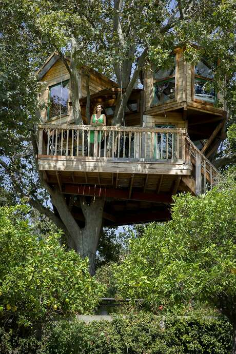Puneet Sandhu at her tree house outside her San Jose home. Photo: Santiago Mejia, The Chronicle