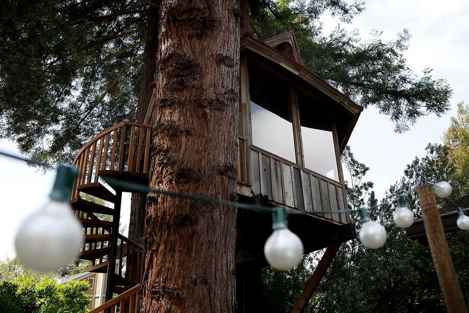 A tree house built on commission by artist Jay Nelson for Daria Joseph is nestled between a stand of trees in her backyard in Marin. Photo: Michael Short, The Chronicle