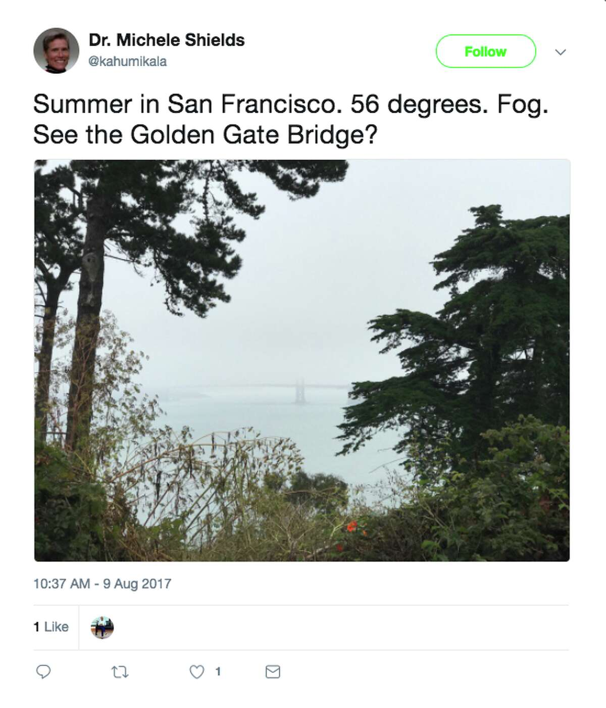 Twitter users shared photos of the San Francisco fog this week.