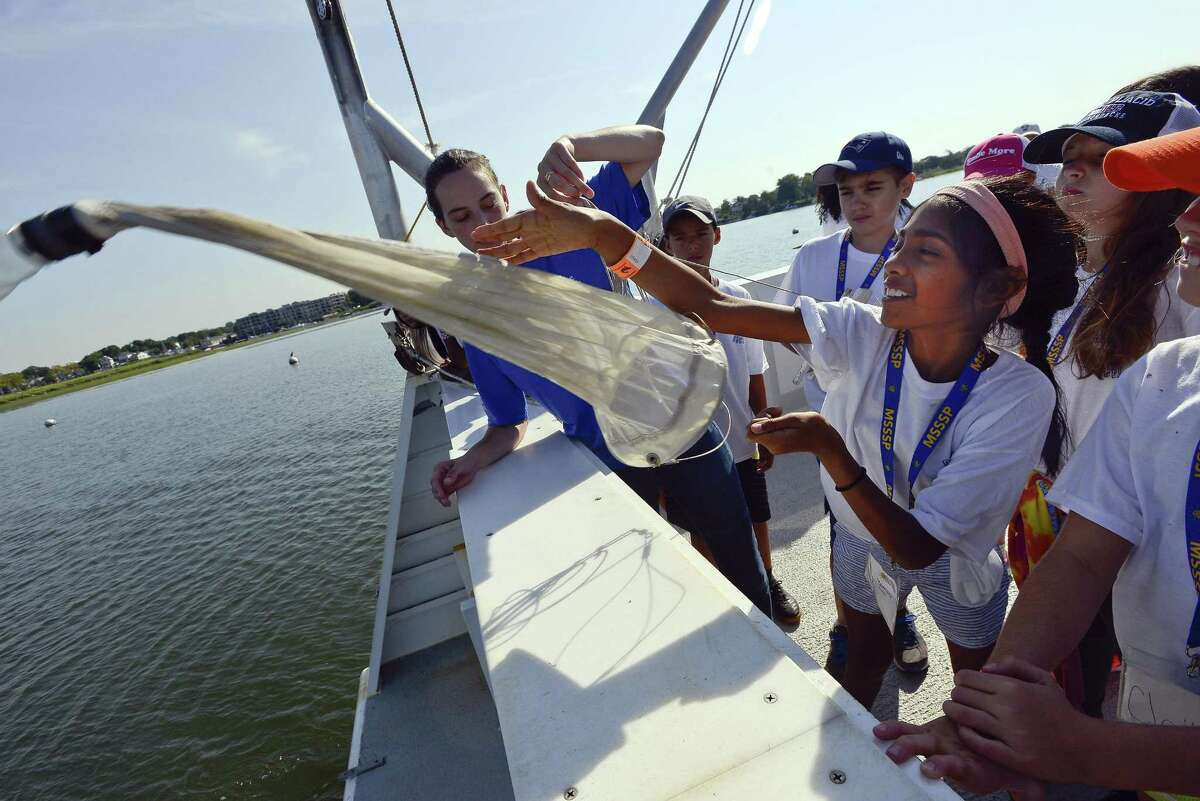 Maanasa Kumar, one of 30 students from Rippowam Middle School tosses a net into the Long Island Sound from The Maritime Aquarium at Norwalk 64-foot research vessel R/V Spirit of the Sound on Friday, August 11, 2017. The students are part of a summer scholars program that took a science education cruise on the Long Island Sound to learn about the sea life and pollution that it is being affected by.