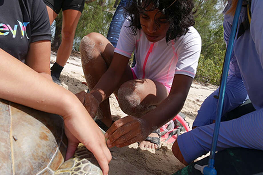 Smith Middle School alumna and incoming Bridgeland High School freshman Smitha Bhagavatula helps measure a sea turtle near the Cape Eleuthera Institute (CEI) on the island of Eleuthera in The Bahamas. Bhagavatula and Arnold Middle School teacher Tiffany Schmidtendorff attended the research expedition July 13-20 as Argonauts through the Chevron-sponsored JASON Learning program. Photo: CFISD