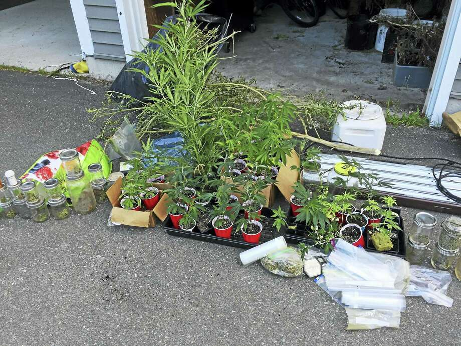 Items seized from Andrea Tiffany's home by Clinton Police. Photo: Clinton Police Department