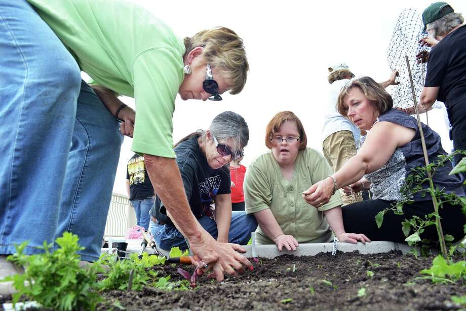 Lori Lodge, far right, director of development at the Northern Middlesex YMCA in Middletown, plants vegetable seeds with other volunteers at the Community Health Center's rooftop garden in this 2014 photograph. She is the new chairwoman of the Middlesex United Way Women's Initiative. Photo: File Photo