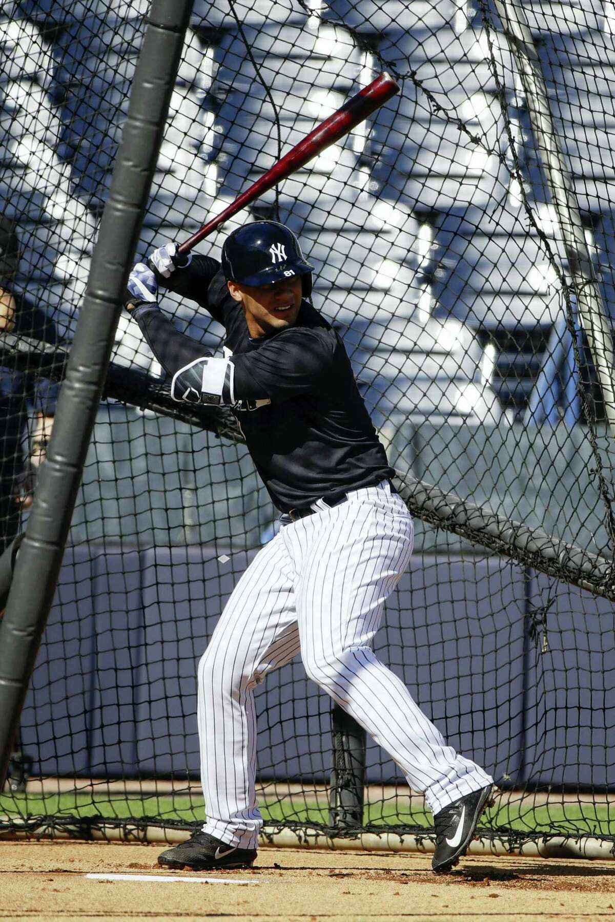 Yankees prospect Gleyber Torres takes swings during a spring training workout in Tampa, Fla.