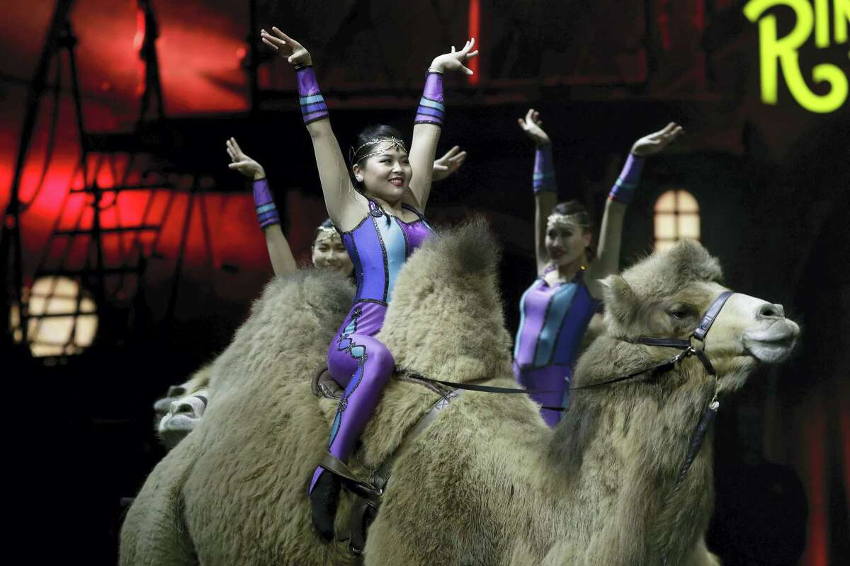 """Ringling Bros. and Barnum & Bailey acrobats ride camels during a performance Jan. 14, 2017 in Orlando, Fla. The Ringling Bros. and Barnum & Bailey Circus will end the """"The Greatest Show on Earth"""" in May, following a 146-year run of performances. Kenneth Feld, the chairman and CEO of Feld Entertainment, which owns the circus, told The Associated Press, declining attendance combined with high operating costs are among the reasons for closing."""