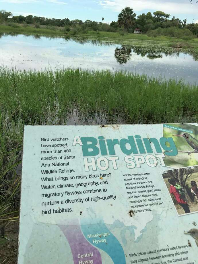 Wetlands in the refuge attract both migratory and resident birds. / Houston Chronicle