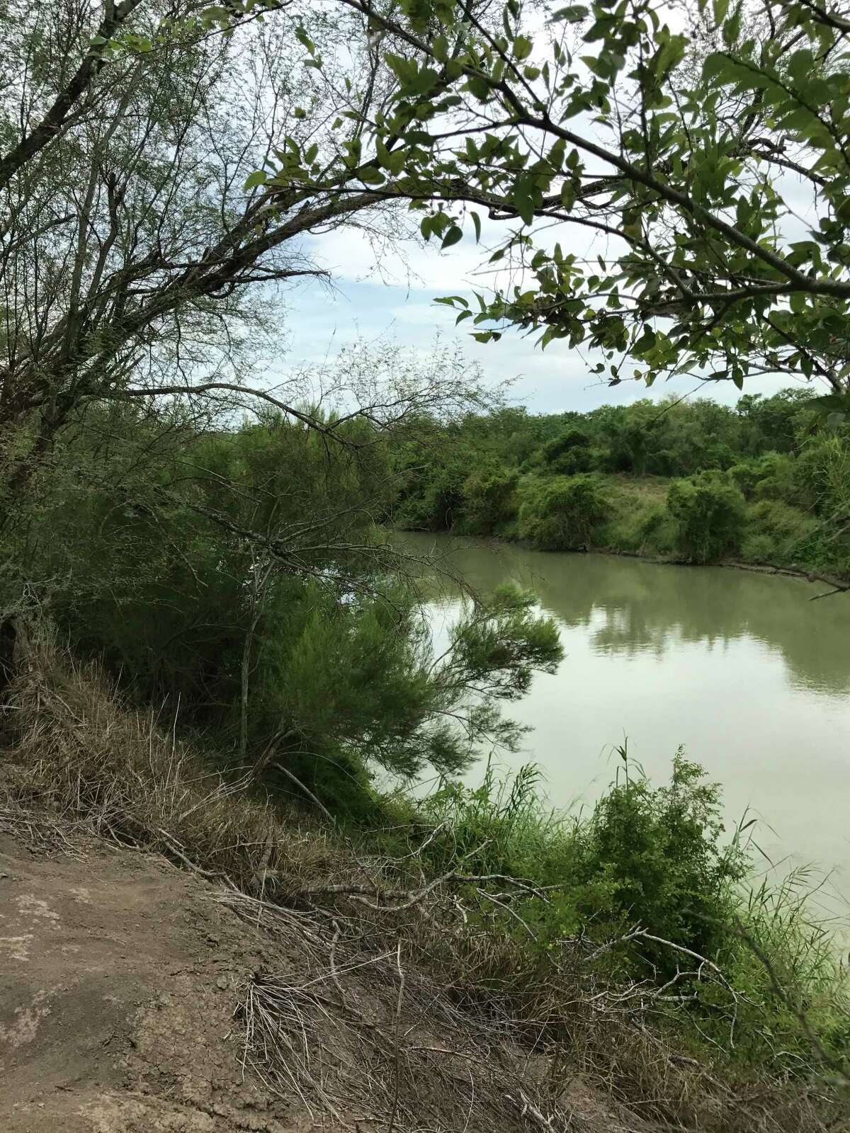 The riparian corridor along the Rio Grande is one of the most biologically diverse areas in the nation.