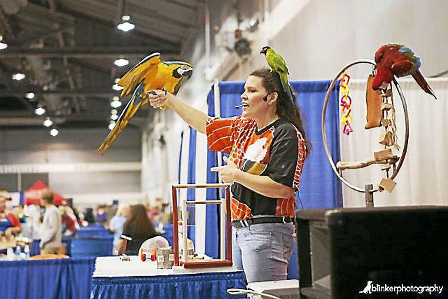 Mary-Beth Kaeser, founder of Horizon Wings Raptor Rehabilitation & Education in Ashford, holds a golden eagle as she addresses the crowd during the Featherfest 2016 raptor program in Middletown. Photo: Contributed Photo