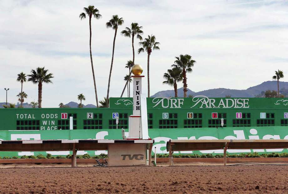Turf Paradise in Phoenix has euthanized one horse and is quarantining two others in the wake of a herpes outbreak that surfaced in New Mexico. Photo: Matt York — The Associated Press  / AP