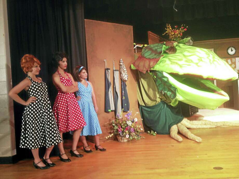 "The Young People Center for Creative Arts is presenting ""The Little Shop of Horrors"" at the East Hampton Middle School Friday and Saturday at 7 p.m., with a matinee performance at 2 p.m. Sunday. Photo: Jeff Mill — The Middletown Press"