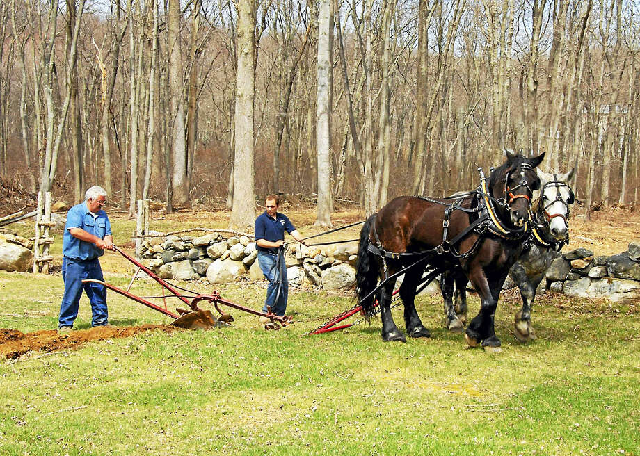 Photo by Jody Dole  Plowing with a team of horses is one of the events of Bushnell Farm on Saturday, May 28. Visitors can experience a Valley-Shore farm preparing for the Revolutionary War in 1776. The event is free with on-site parking. Photo: Journal Register Co. / ©2015 JODY DOLE