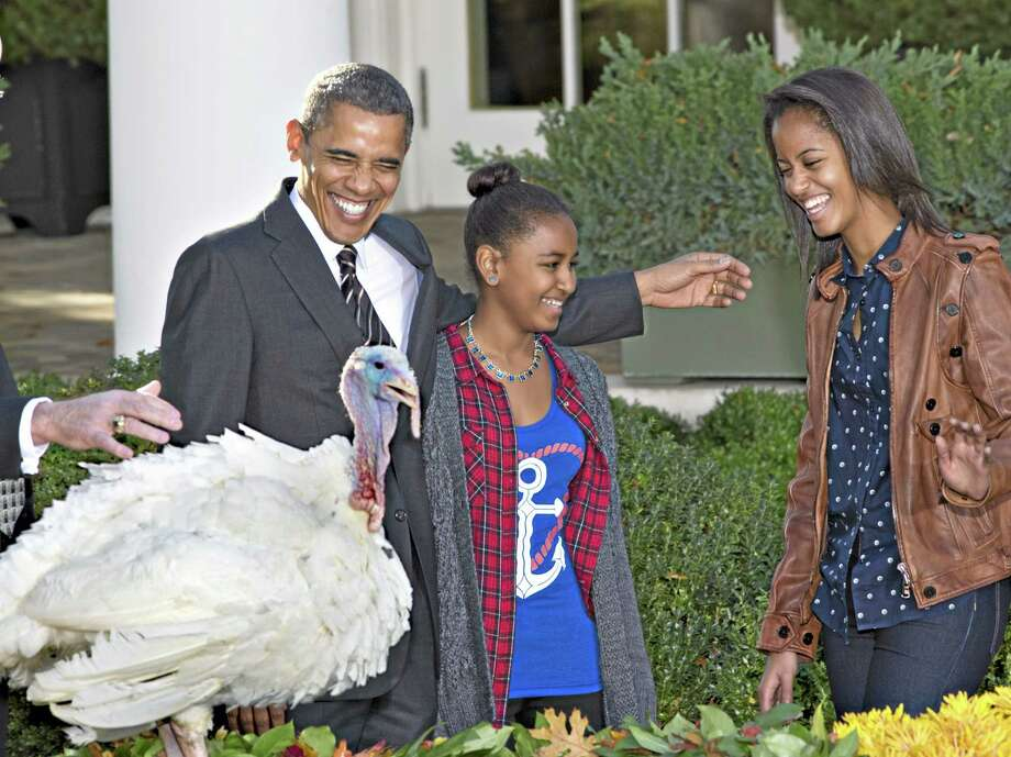"President Barack Obama carries on the Thanksgiving tradition of saving a turkey with a ""presidential pardon"" in this archive photograph. Photo: File Photo  / AP"