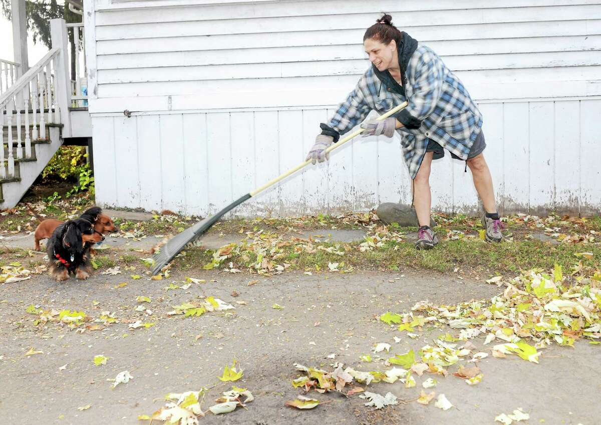 Cromwell offers free pickup of leaves in the autumn.