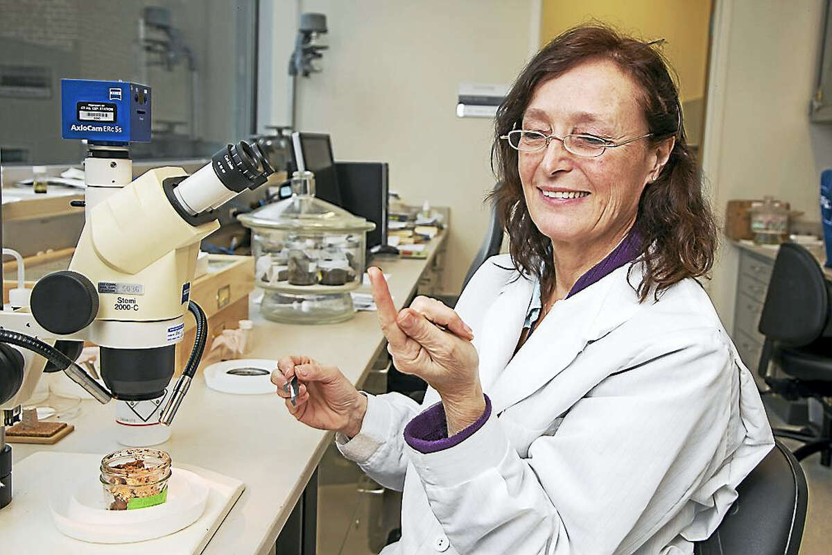 (Derek Torrellas - CHIT) Gale Ridge, entomologist, inspects a bed bug on her finger before placing it back in a container with the rest of its colony. Ridge works at the Connecticut Agricultural Experiment Station in New Haven, where she has specialized in bed bugs for the last 13 years.