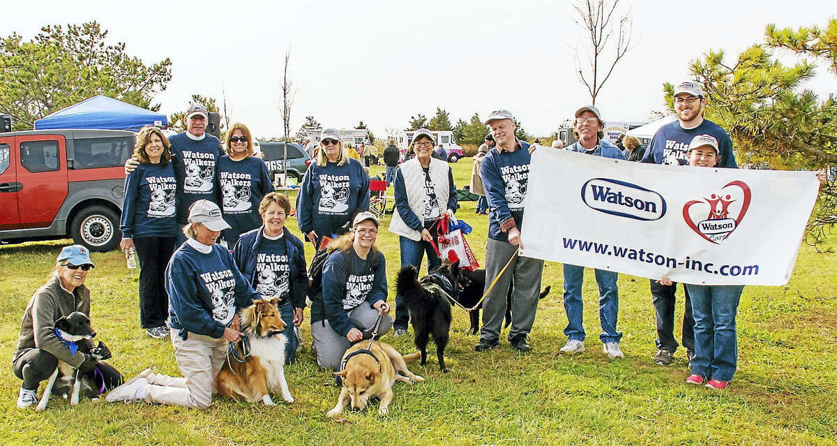 Watson Inc. is proud to announce it will be a Gold Paw Sponsor of the 2016 Shoreline PuppyUp Walk. Watson also has a team participating in the walk with the goal to raise $5,000 for the charity. Watson would also like to encourage other local business to sponsor this event, and form a team of their own. The 2016 Shoreline PuppyUp Walk will be held on October 30, from 11 AM to 3 Pm at the Guilford Fairgrounds on Lovers Lane in Guilford, Connecticut. This year, plans are underway to expand the vendor and craft area, food trucks, and silent auction. There will also be live music provided by The Elwoods. https://www.facebook.com/THE-ELWOODS-68940511705/