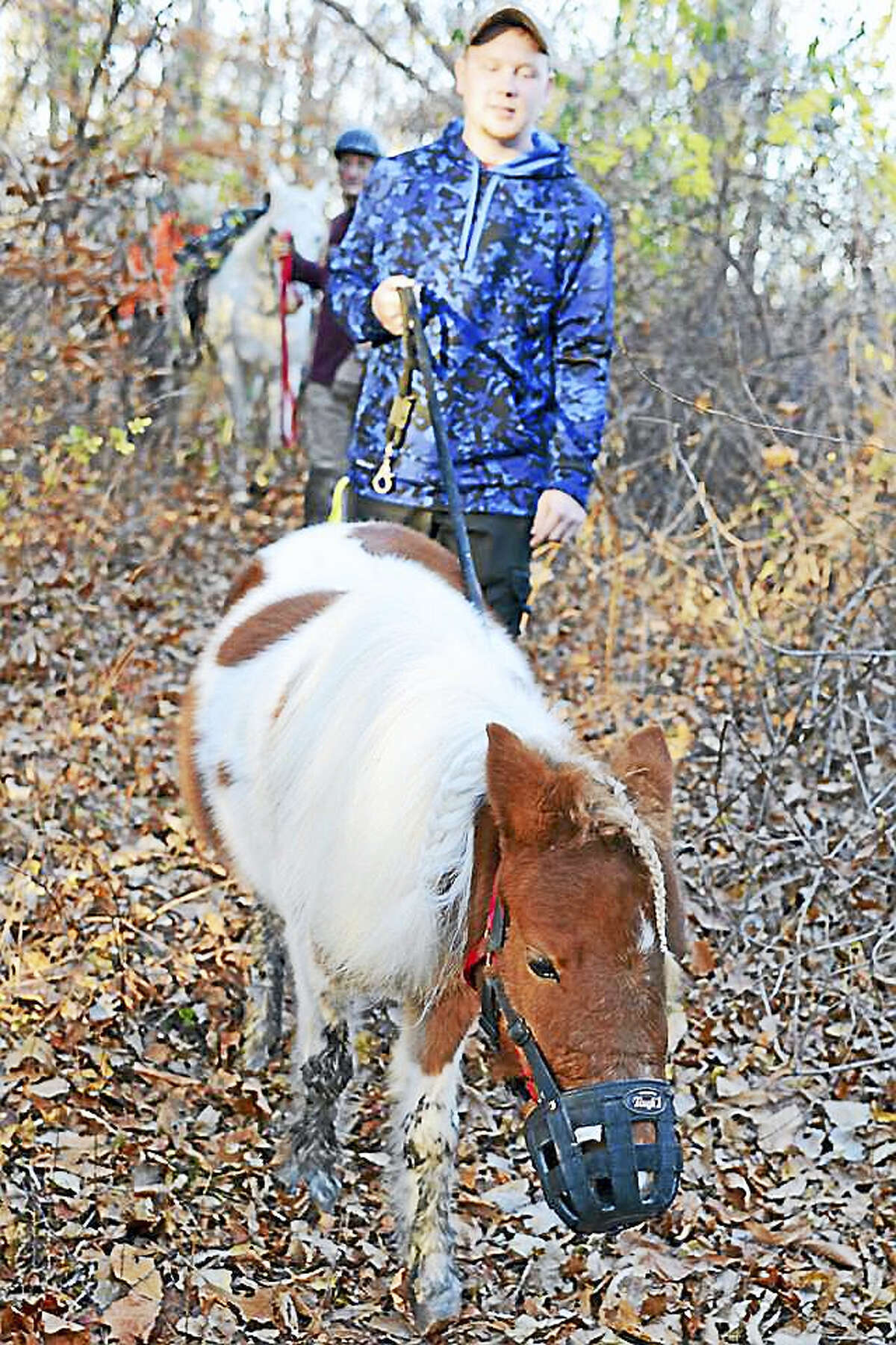 Two horseback riders called for help in getting their horse out of the mud on a trail near the Turkey Hill Reservoir.