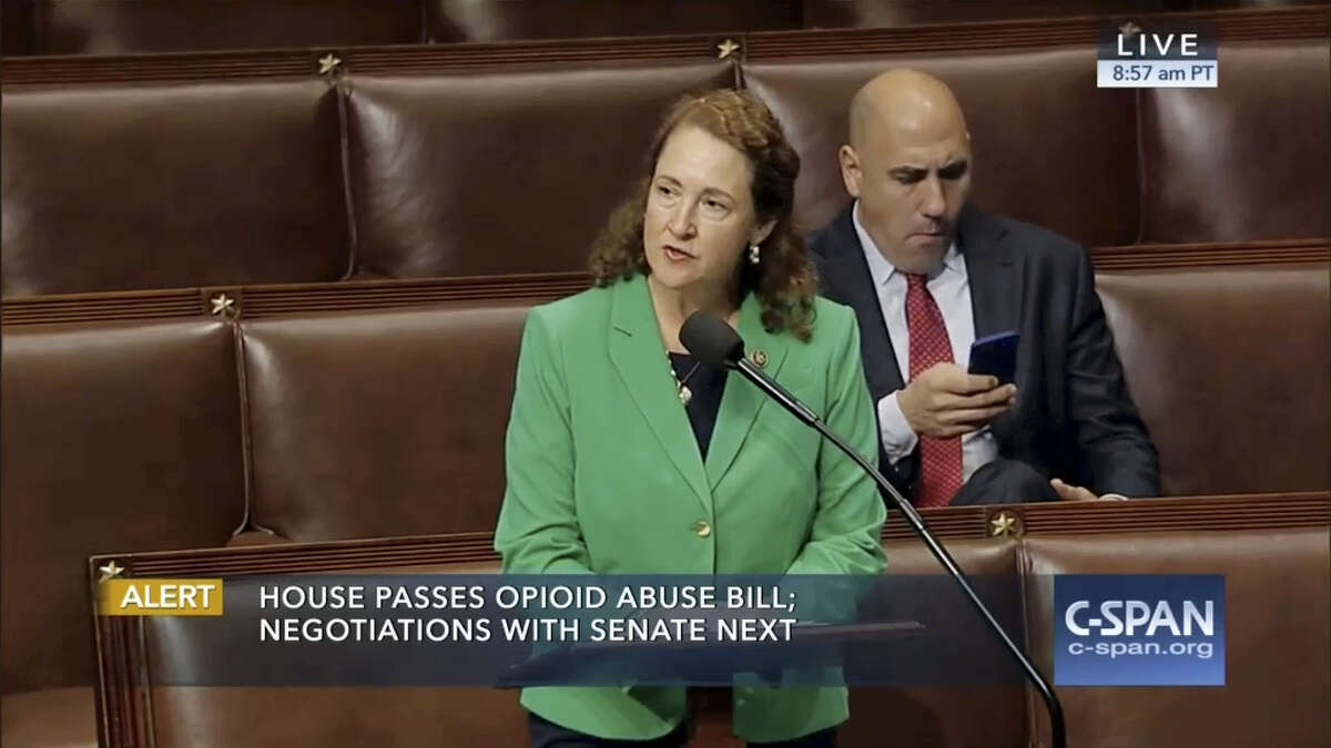CONTRIBUTED PHOTO U.S. Rep. Elizabeth Esty, D-5, speaks on the House floor Friday.