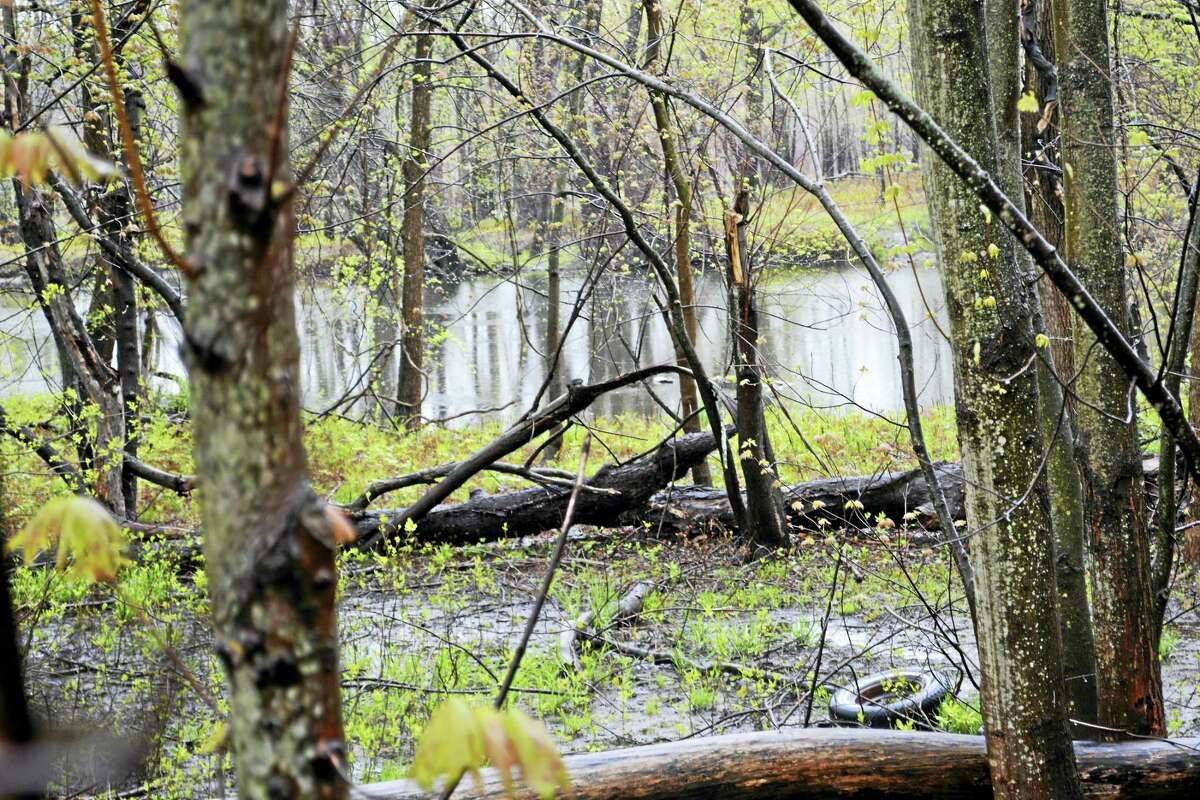 The body of Middletown resident Daniel Loguidice was found in the Mattabesset River on Monday.