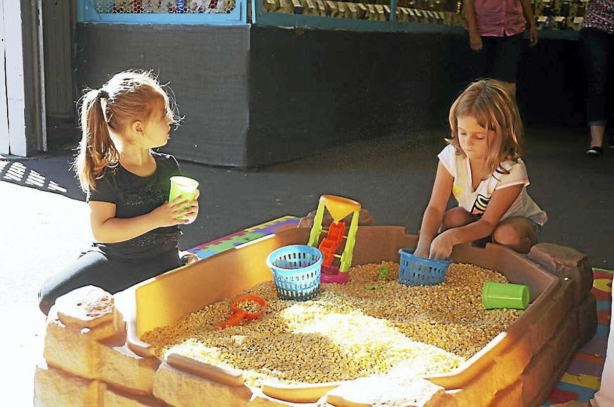 Children enjoy playtime at last year's fair.