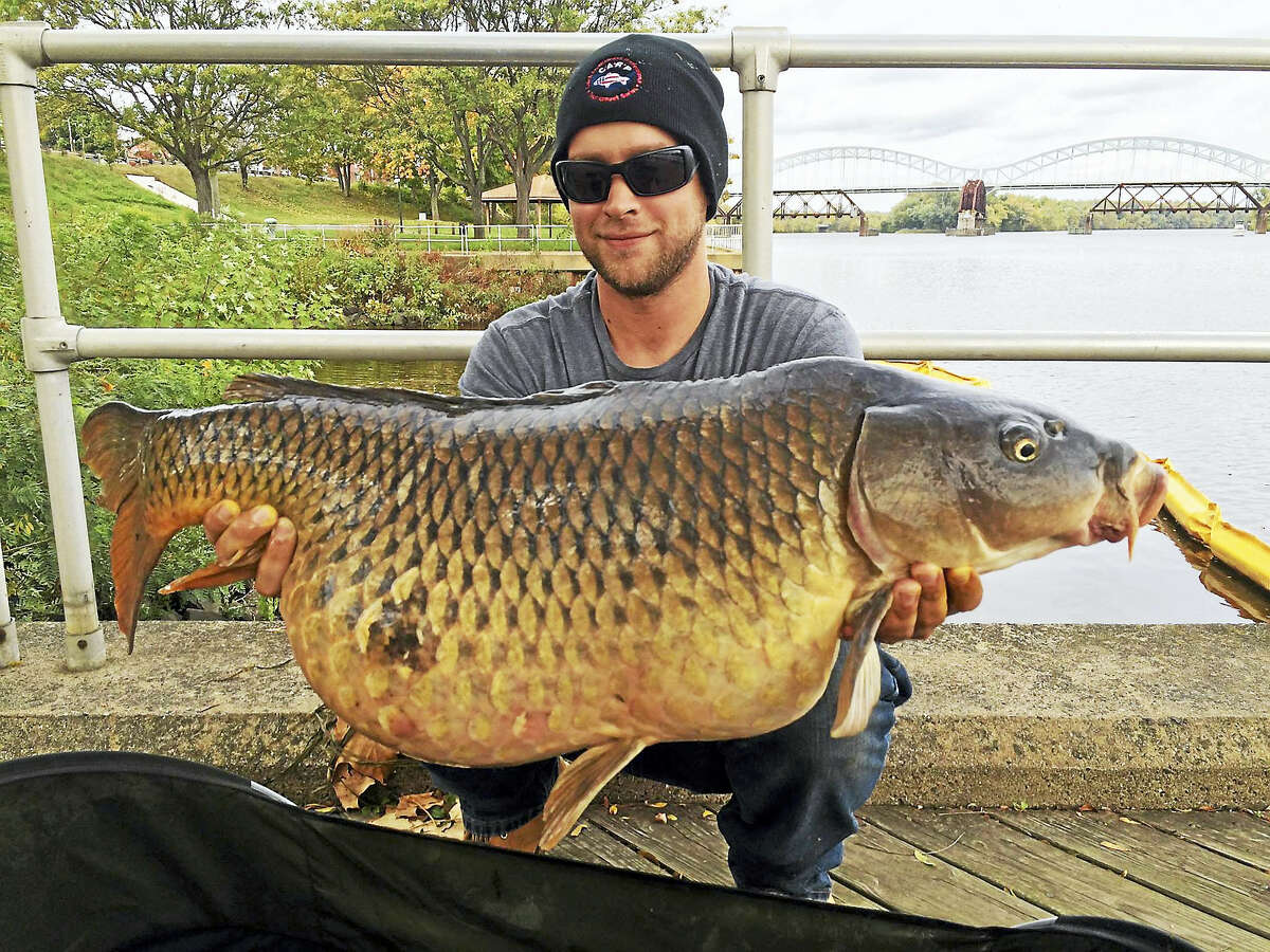 Mike Hudak caught a prize-wining 33-pound carp in Middletown last year as part of the Connecticut Carp Open. The photo is among hundreds of naturalist and sporting images shared by the CT Fish & Wildlife on Facebook.