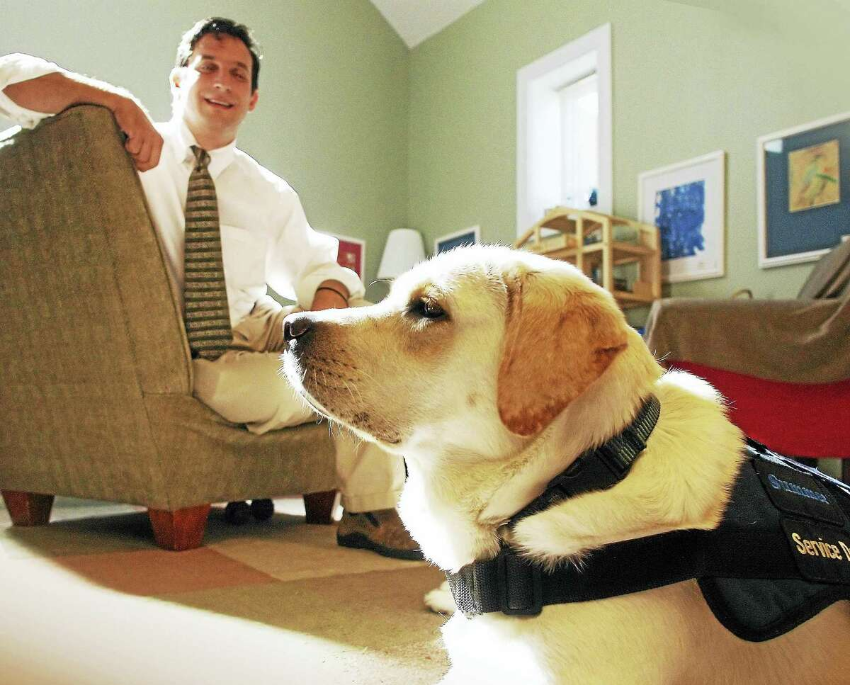 """In this file photo from 2011, David Meyer, of Branford, sits behind his dog """"Summer"""" who had the role of reassuring a child witness during testimony in the courtroom."""