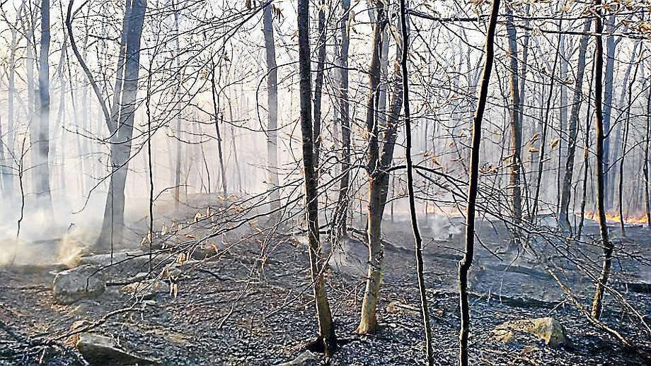 Fire crews from Middletown and surrounding towns helped contain a 15-acre brush fire last year in the Meshomasic State Forest in Portland. Photo: File Photo