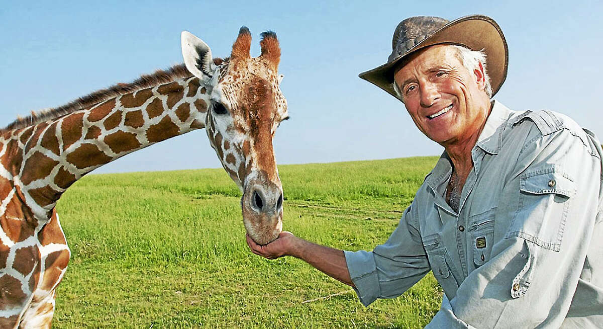 """Contributed photoAmerica's most beloved animal expert, Jack Hanna, brings his Emmy Award winning television series live on stage with """"Into the Wild Live"""" to the Palace Theater in Stamford on Saturday March 5 at 5 p.m."""
