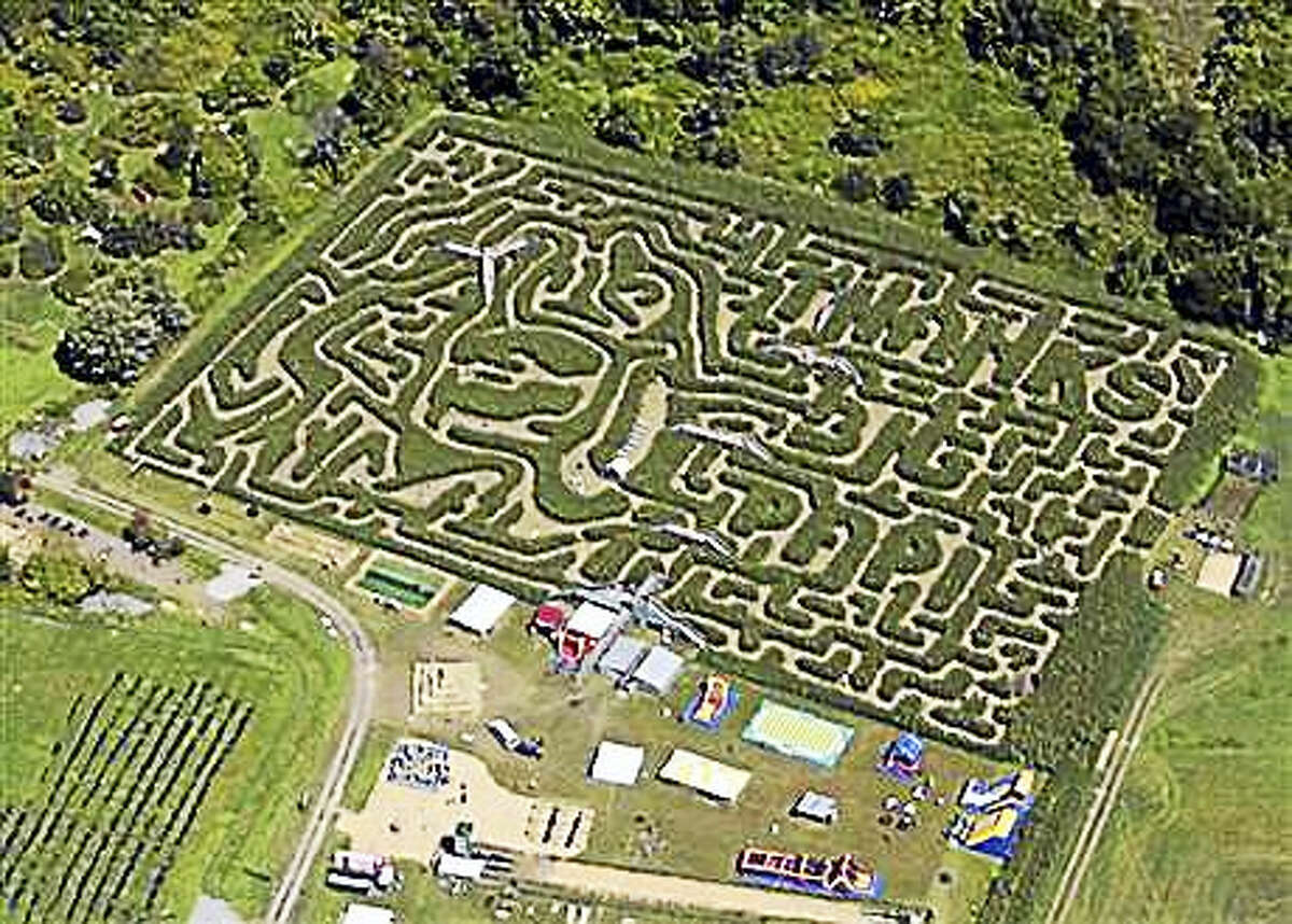 """This aerial view shows a corn maze in the likeness of Boston Red Sox slugger David Ortiz, Tuesday, Aug. 30, 2016, in Sterling, Mass. The 8-acre maze was created by Davis Mega Maze and features a cornstalk rendering of Ortiz's trademark home run pose of pointing two fingers to the sky. It's accompanied by the phrase """"Thanks Big Papi."""""""