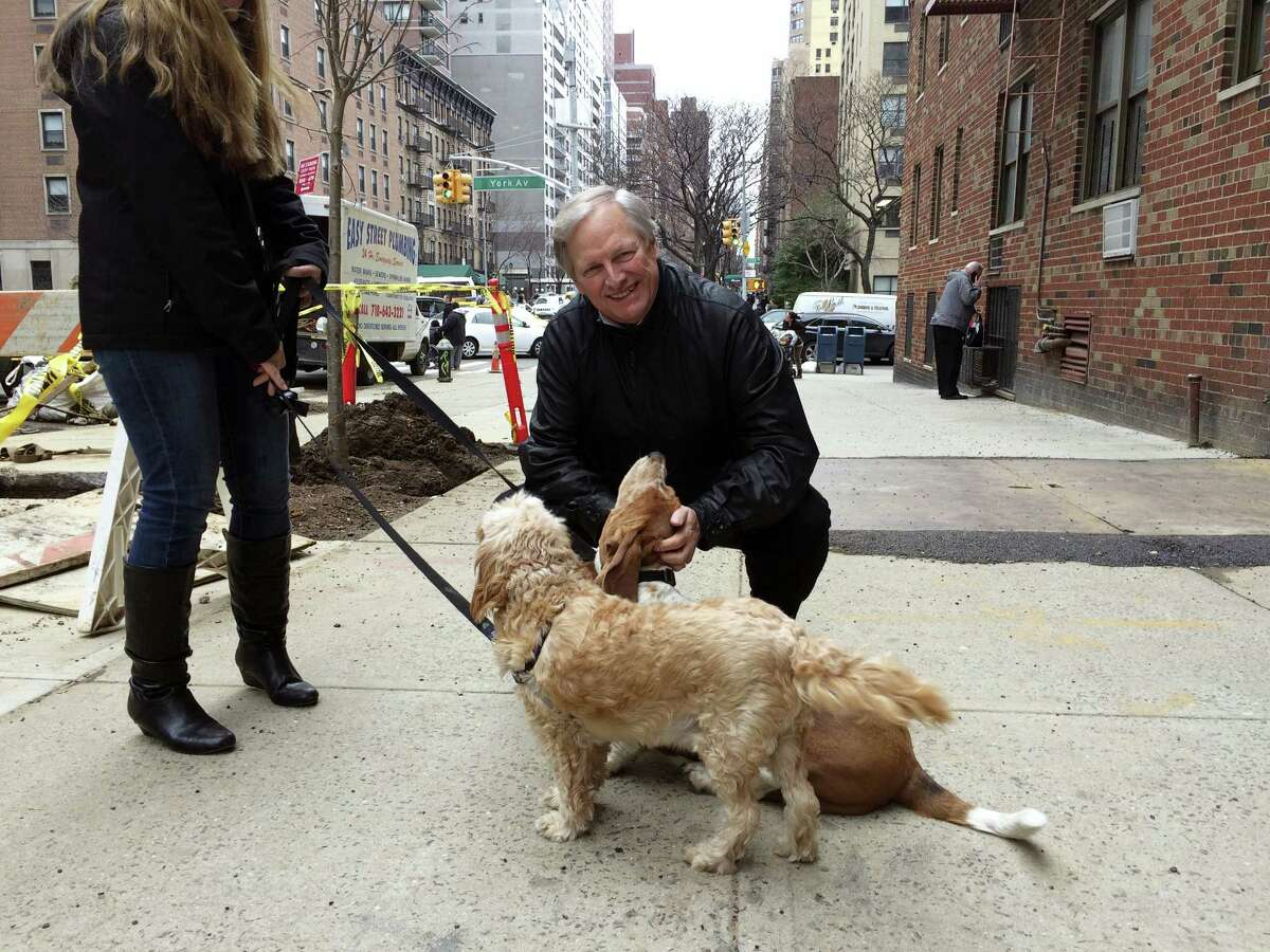 David Frei petting a couple of local dogs during a walk around his Manhattan neighborhood. The Westminster Kennel Club show starts Monday, and Frei will be the television host for the 27th and final time. (AP Photo/ Ben Walker)