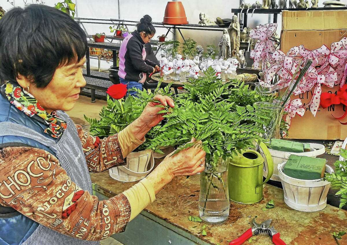Flower designer Yukiko Field, of Middletown, has been assembling Valentine's bouquets for 16 years at Uncle Bob's Florist and Garden Center on Route 66 in Middlefield.