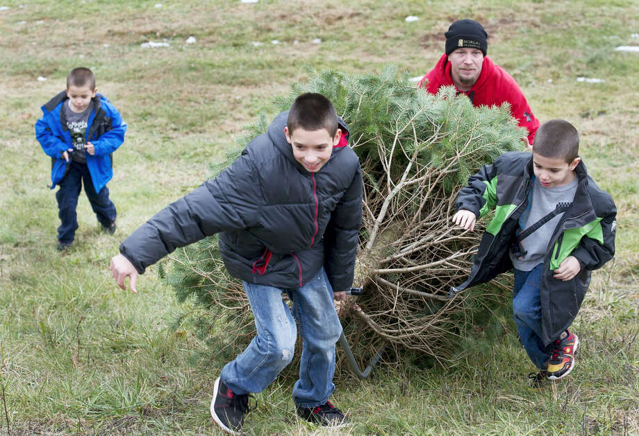 A family haul the tree they cut up a hillside. Photo: File Photo  / YORK DAILY RECORD/SUNDAY NEWS