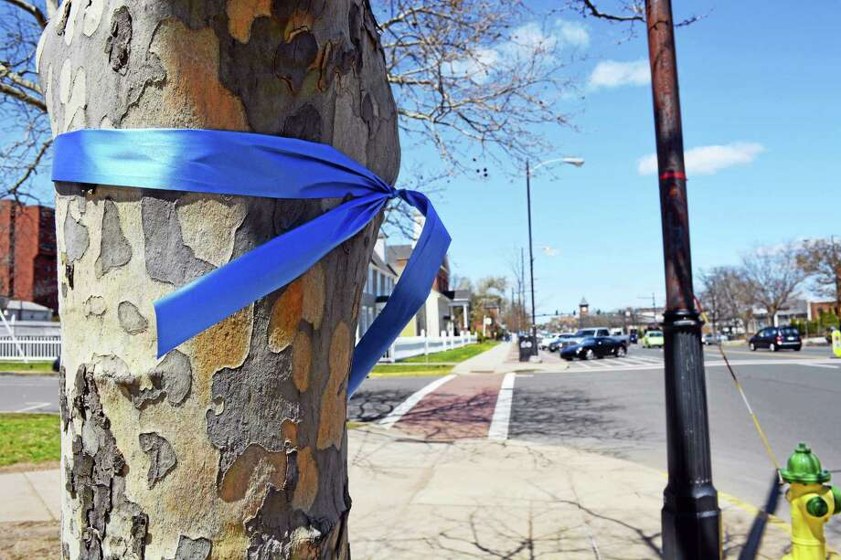 To help honor the member of Barbara Eddinger, who was killed in a March 31 hit-and-run, blue ribbons have been tied around trees lining Main Street in preparation for Sunday's Harvard Pilgrim Half Marathon & Legends 4-Mile race. Photo: Cassandra Day — The Middletown Press
