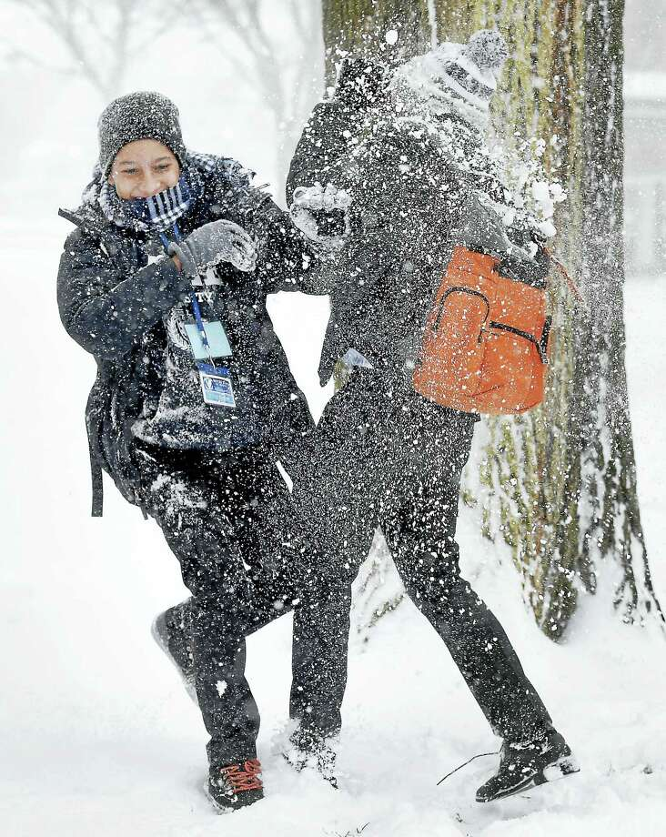 Victor Batista, left, and Joan Gomez have a snowball fight on Yale University's Cross Campus in New Haven in January. Photo: Arnold Gold — New Haven Register File Photo