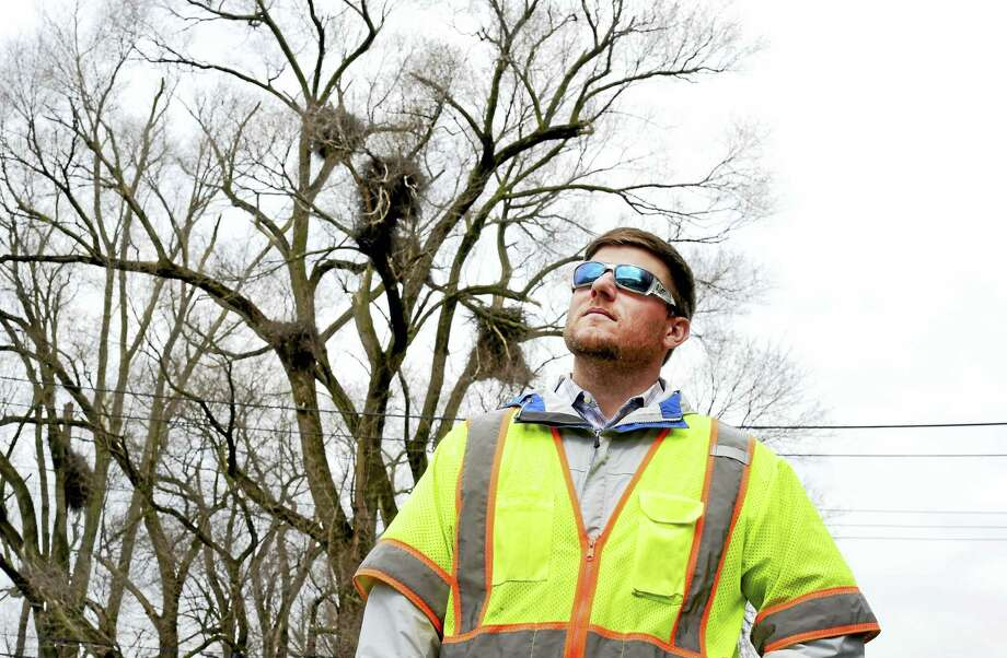 Shawn Crosbie, an environmental analyst for UIL Holdings, near power lines that are near a nesting area for eagles along Ella T. Grasso Boulevard in New Haven. Photo: Peter Hvizdak — New Haven Register  / ©2016 Peter Hvizdak
