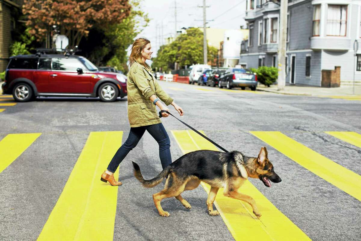 A woman with a Fitbit walks her dog. The sensor records steps even if she's not moving her arms in a typical walking motion.