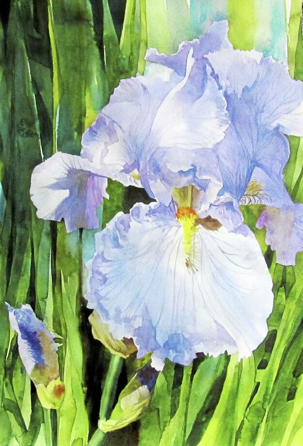 Contributed photo Single Iris Bloom by Bivenne Staiger of Cromwell, a painting included in Maple and Main's next exhibit. Photo: Journal Register Co.
