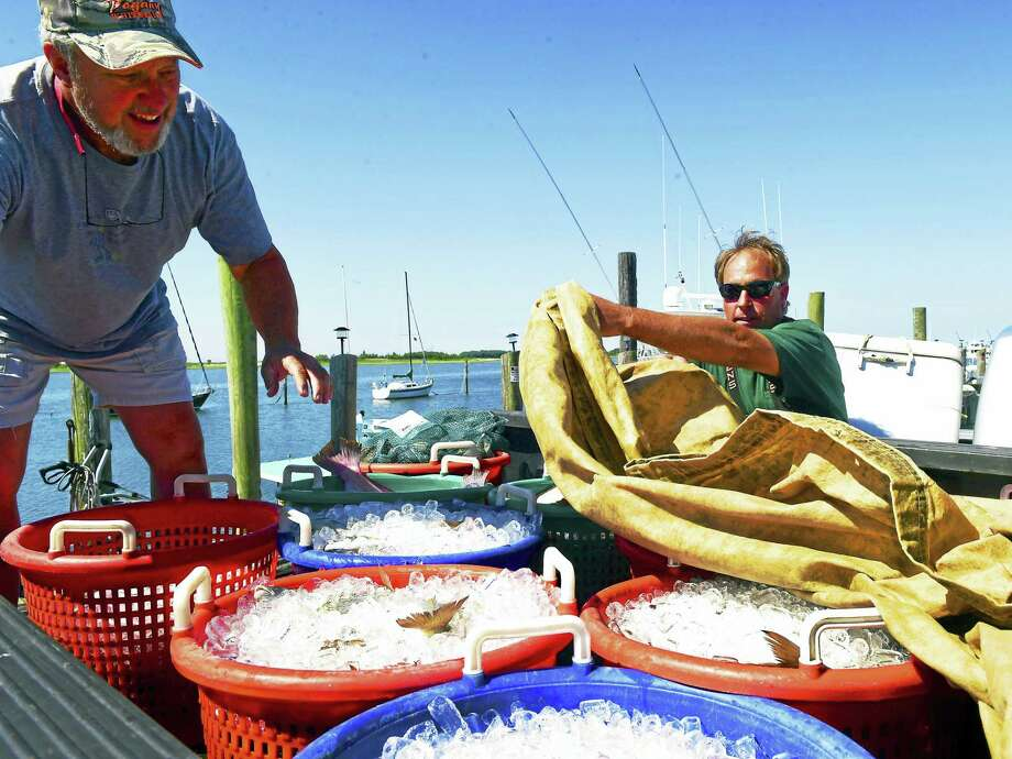 "(Peter Hvizdak - New Haven Register)Fish on ice to be brought to market in New London by Commercial fisherman Doug Pogany, right, captain of the fishing vessel ""Kestrel"", right,  a boat the drags for fish and is moored at Lang Dock a Lobster Landing in Clinton, Connecticut, Friday, June 24, 2016. At left is his cousin Dan Pogany, who is helping him put the fish on ice. Photo: ©2016 Peter Hvizdak / ©2016 Peter Hvizdak"