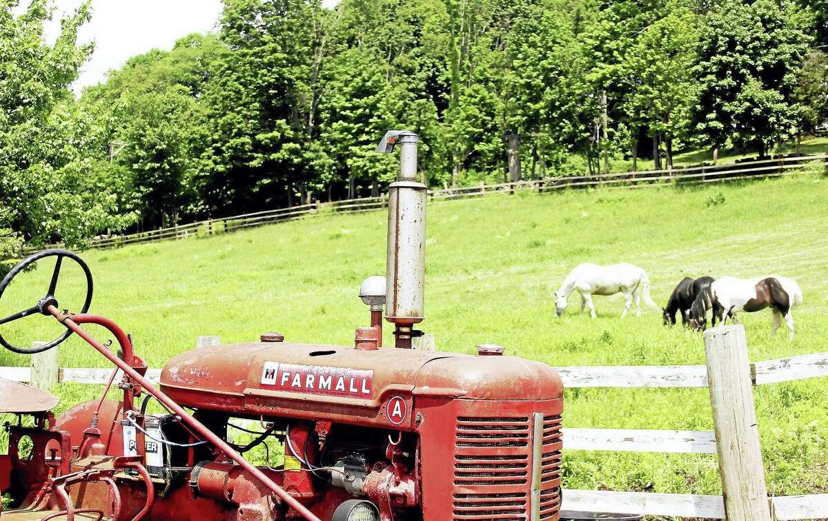 The Middlefield and the Rockfall section of town are marking 150 years of rural history and a connection to the country's agricultural past.